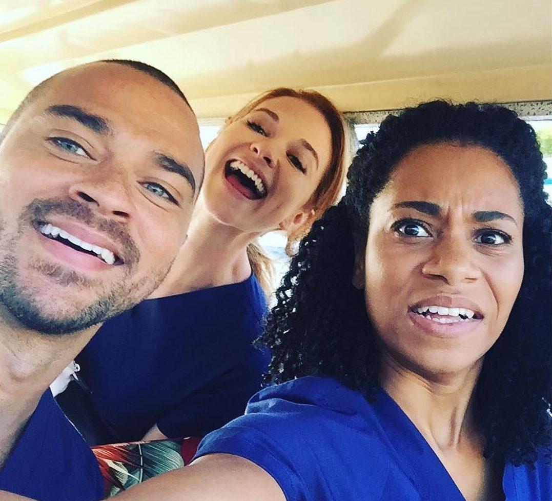 Greys Anatomy Staffel 14 Sky